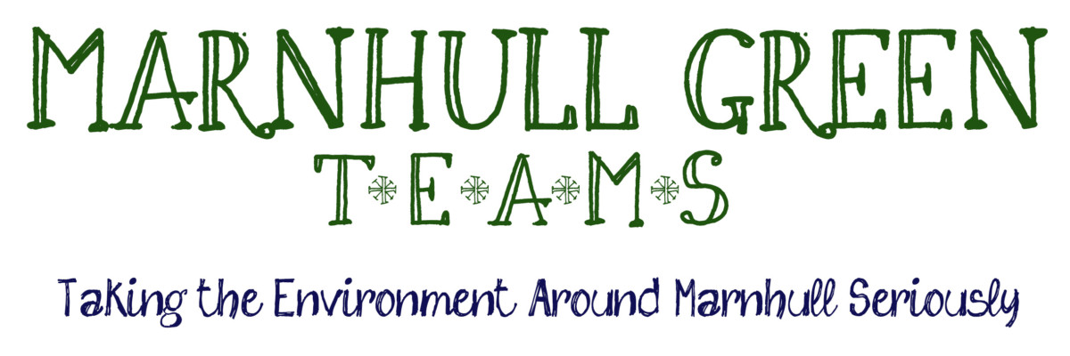 Marnhull Green Teams logo vl
